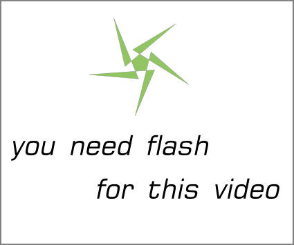 flash_movie