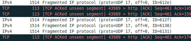 fragmented_ip_protocol2